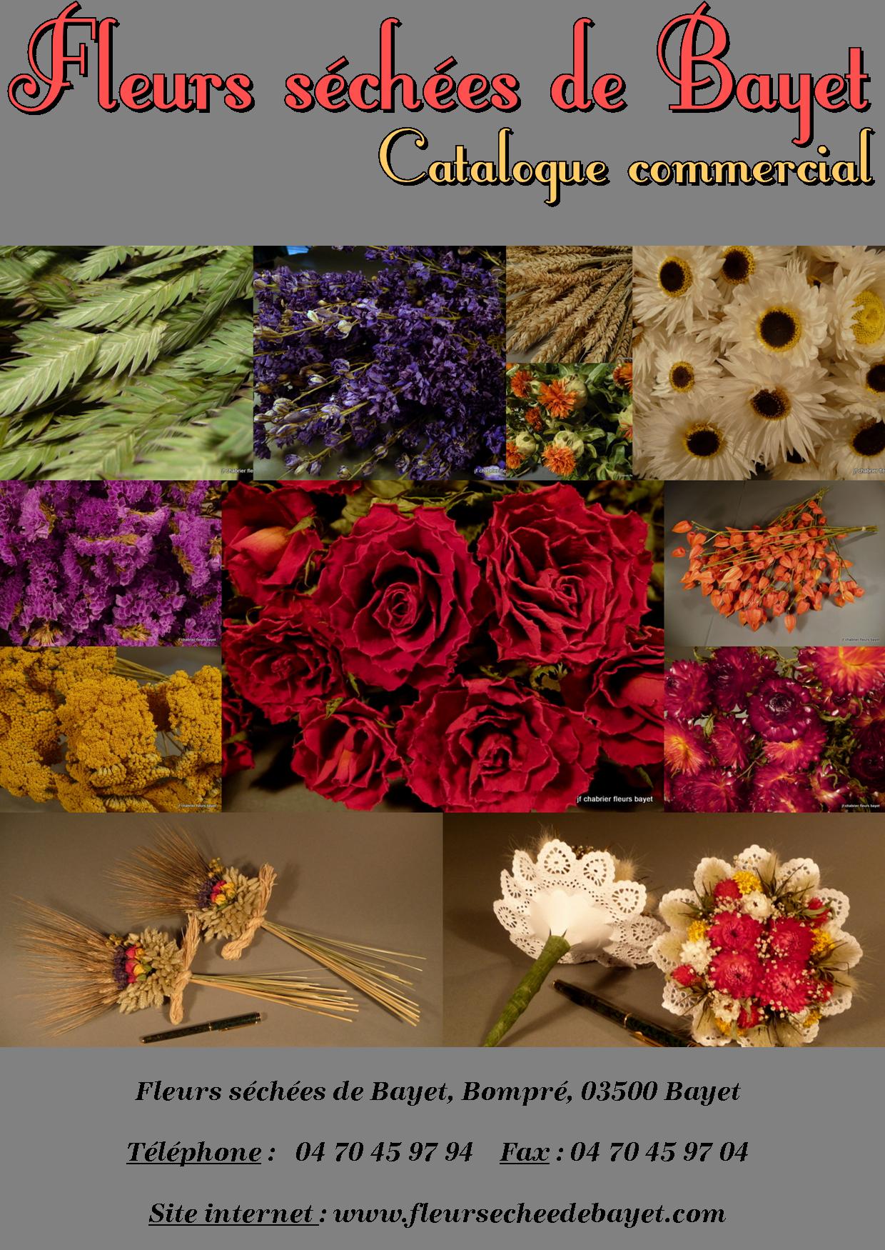 Bienvenue aux fleurs s ch es de bayet for Catalogue de fleurs